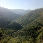 voici le lieu où se situe l'orphelinat, une nature belle et abondante