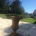 terrasse ombragée table d'hôtes du manoir b&b puch d'agenais 47160