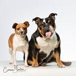 Dizzy en Pip - Connie Sinteur Fotografie
