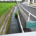 水路補修工事着工前