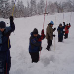 Probing in an avalanche scenario