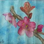 Flor de Cerezo - Luz Victoria Piña
