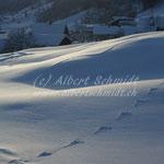 Winterabedn im Thon - Schwanden