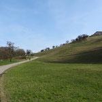 Ab Bad Mühlacken ändert sich die Landschaft in das typische Mühlviertler Hügelland