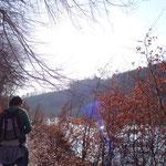 Vom Kraftwerk Staning geht ein schmaler Uferweg Richtung Haidershofen...