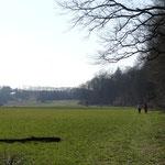 Weite Wiesenflächen öffnen die Landschaft vor dem Kraftwerk Staning