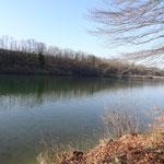 die Konglomeratschlucht zwischen Ernsthofen und Staning dominiert das Uferbild