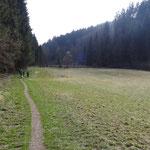 Breite Wiesen im Oberlauf des Pesenbaches