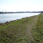 Beim Kraftwerk Ernsthofen ist die Uferlandschaft noch sehr eintönig