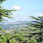 Zicht op Assisi vanuit Spello