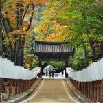 de 'oprit' van de Haeinsa tempel