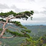 Sobaeksan National Parc