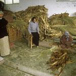 Een vrouwen cooperatie in het noorden. Mandenvlechten met gedroogde bananenbladeren