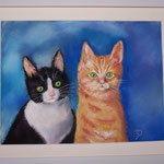 Mes chatons 30x40cms