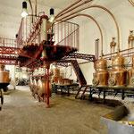 La Distillerie Combier et ses liqueurs- Gite des Nerleux, 8-12 p