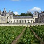 Château de Brézé- Gite des Nerleux, 8-12 p