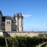 Château de Saumur- Gite des Nerleux, 8-12 p