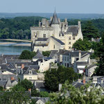 Montsoreau : petite cité de caractère- Gite des Nerleux, 8-12 p