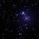 NGC 2264 Christbaum Nebel aufgenommen auf Teneriffa