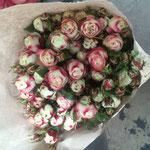 Роза кустовая от 150 руб/шт.