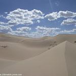 Le sable doré à perte de vue