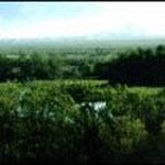 Parc naturel d'Aiguamolls