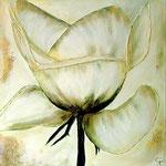 Golden rose 100 x 100