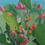 opuntia ficus indaca 2  60x80 cm ( sold )