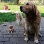 Clea mit Onkel Bruno