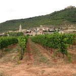 rioja wijngaard