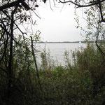 Blick auf den Flögelner See (Foto: Heike Wierhake-Kattner)