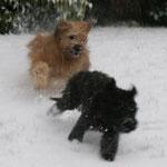 Rennspiele im Schnee