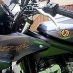 Motorradaufkleber  Yamaha Fazer