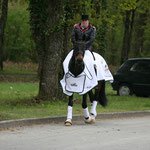 Windig, Kalt, Nass- das war Saumur 2012