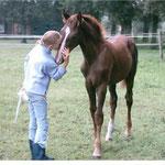 Beautiful Mind als Fohlen mit der Tochter seiner Züchterin Sabine Hüsers 2005