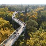 c Baum und Zeit - Baumkronenpfad Beelitz