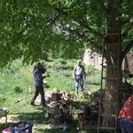 B. Sell und W. Ewert machen Feuerholz