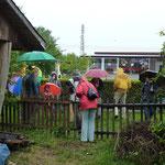 Andrang zur vogelkundlichen Wanderung - auch mit Regenschirm