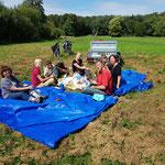 Gemeinsames Picknick