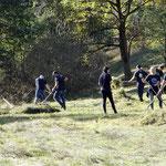 Timberlands fleißige Helfer - Foto: Petra Sell