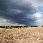 Landschaftsbild -  Foto: Wolfgang Ewert