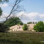 Die große Düne wird erklommen - Foto: Wolfgang Ewert