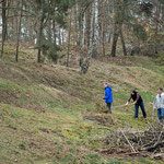 letztes Abharken am Hügel sw Deetz - Foto W. Ewert