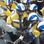 警備員に押しつぶされる祝島の女性。警備員の壁の後ろでは作業員たちが、人が田ノ浦の浜に入れないようするフェンスを設置しようとしている。(2月21日からの強行工事)