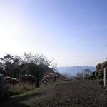 玉置神社 山頂