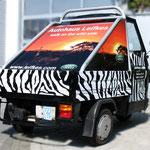 Beschriftung Safari Style Autohaus Leifkes Coesfeld