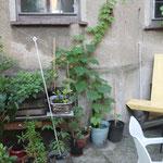 Guerilla-Gardening, Reclamstraße 51