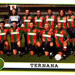 2001-02. Figurine Panini. Squadra