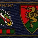 1978-79. Figurine Panini. Scudetto