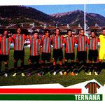 2012-13. Figurine Panini. Squadra
